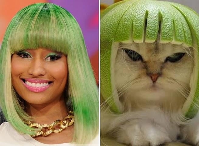 Nicki Minaj gato