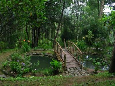 Jawaharlal Nehru Botanical Garden Gangtok