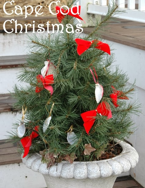mini outdoor tree in urn - Small Outdoor Christmas Trees