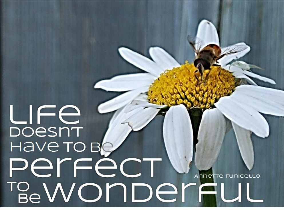 Life Doesn't Have to be Perfect to be Wonderful
