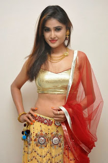 Actress Sony Charishta  Pictures in Half Saree at Seenu Gadi Love Story Audio Release Function    (4)