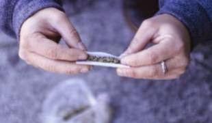 Fumar maconha deforma Cérebro