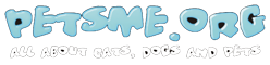 PETSME.ORG - Best Pet Lovers Blog
