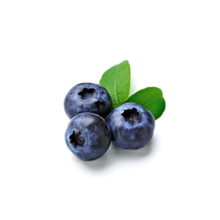 Organic Wild Blueberry Extract