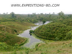 sylhet tea garden and forest tour