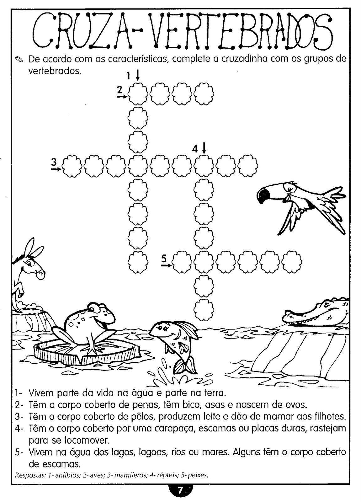 ANIMAIS VERTEBRADOS E INVERTEBRADOS