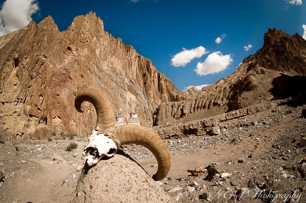 http://np-foto.blogspot.com/2013/11/indie-ladakh.html