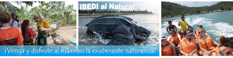 San Blas, Panamá. Observación de tortugas marinas.