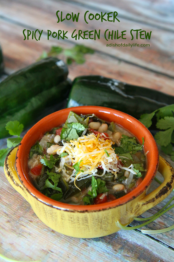 Slow Cooker Spicy Pork Green Chili, shared by A Dish of Daily Life