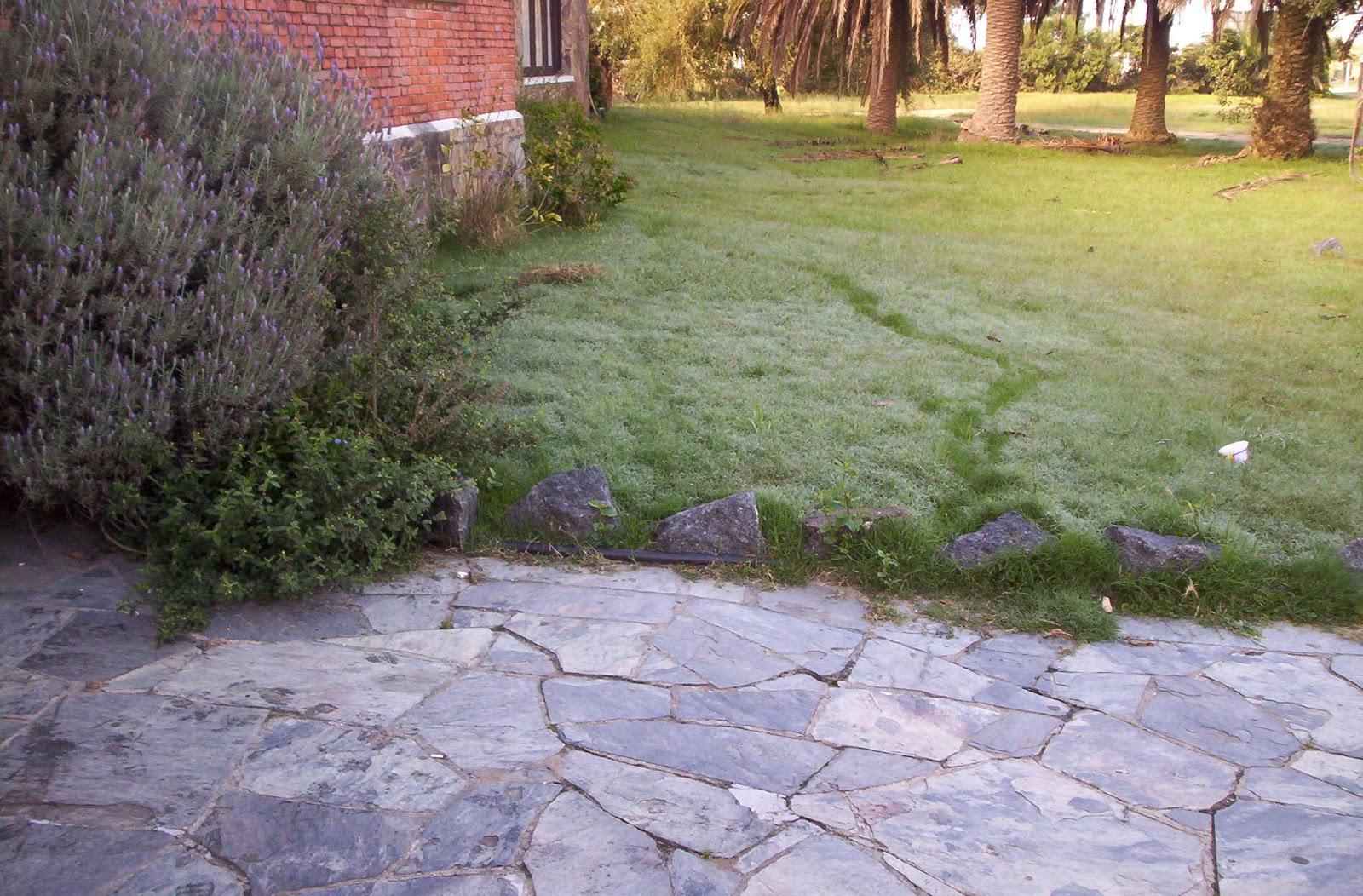 Curso jardiner a utu atl ntida curso jardiner a for Curso jardineria