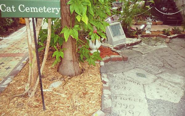 Casa e Museu Ernest Hemingway