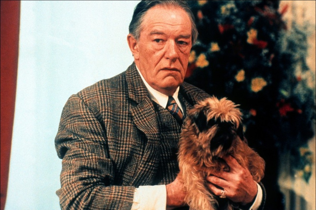 michael gambon and wifemichael gambon young, michael gambon movies, michael gambon eye color, michael gambon facebook, michael gambon fan mail, michael gambon western, michael gambon and wife, michael gambon voice, michael gambon top gear, michael gambon harry potter, michael gambon height, michael gambon death, michael gambon died, michael gambon instagram