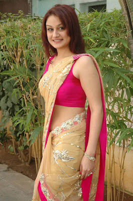 Tamil Actress Sonia Agarwal Hot Saree Photos