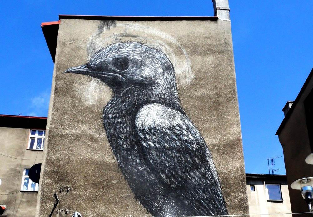 ROA Murals in Katowice, Poland