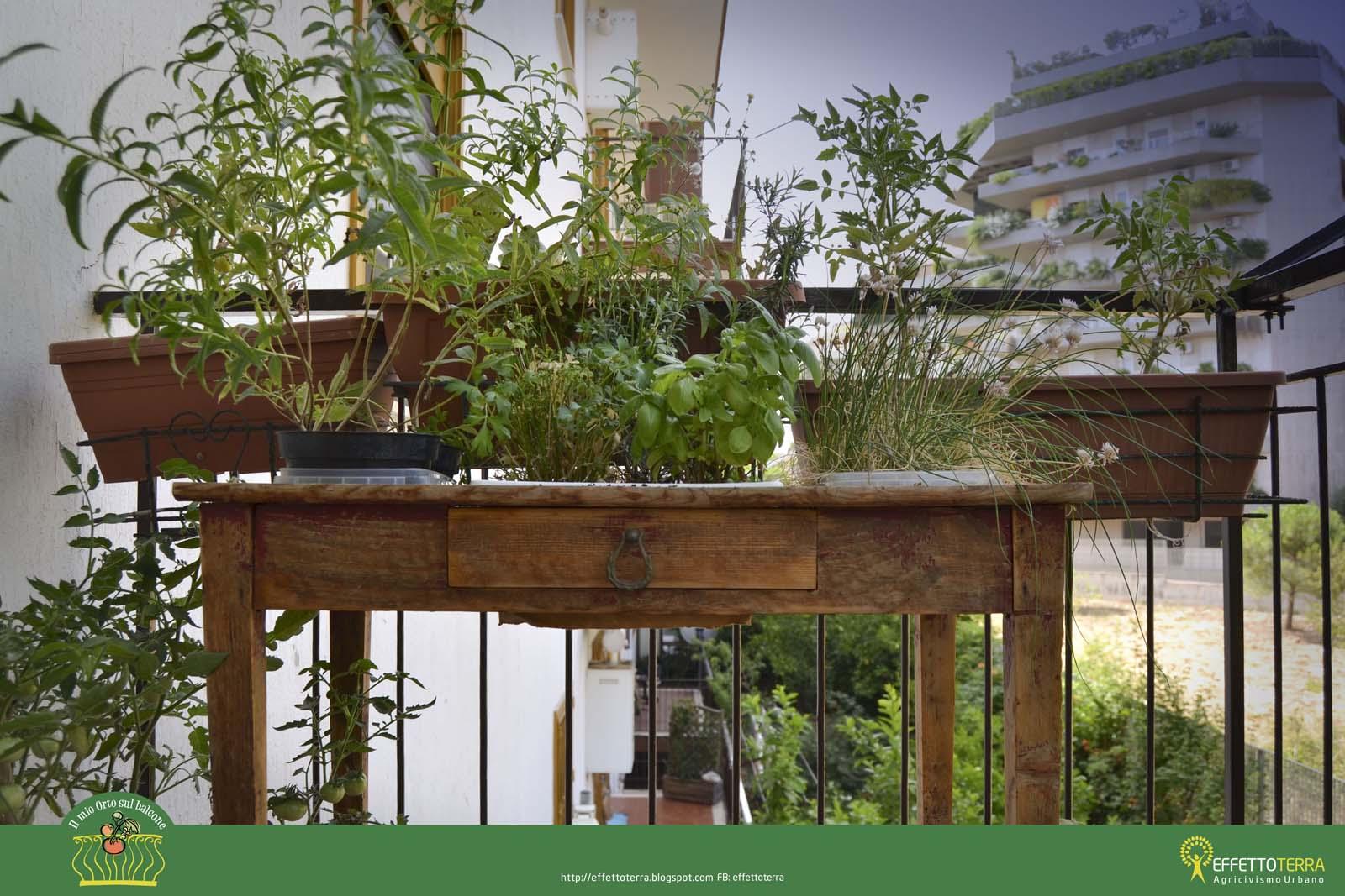 Effetto terra il mio orto sul balcone - Cucina sul balcone ...