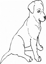 Beagle Coloring Pages Printable
