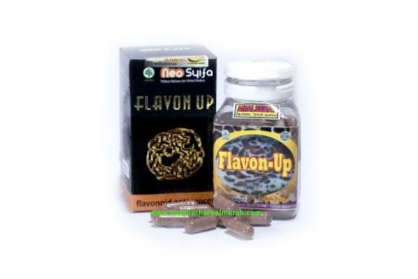 Flavon Up Neo Syifa (Anti Kanker)