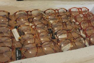 Glasses: Rhipes backyard
