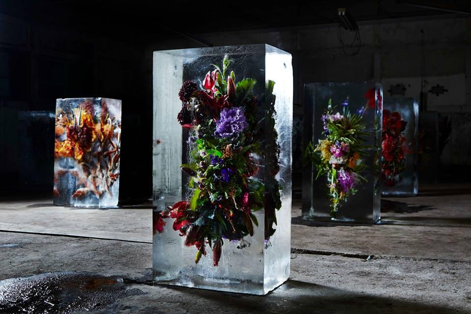 Bouquets de flores em blocos de gelo por Makoto Azuma