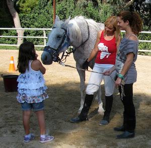 Ganzheitliche Förderung durch das Pferd & Pferdegestützte Psychotherapie