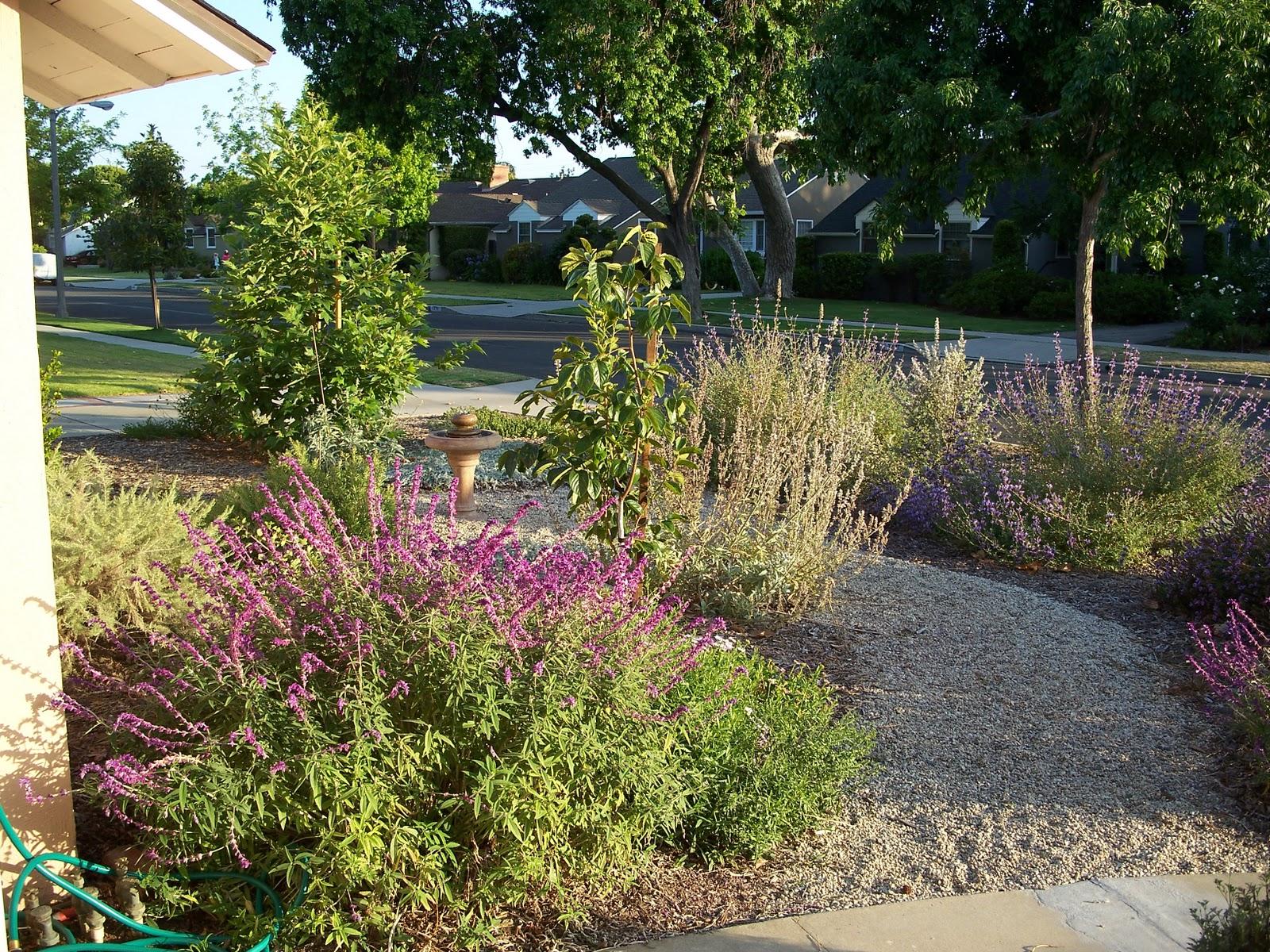Mar Vista Green Garden Showcase 3200 Butler Avenue Cluster 2