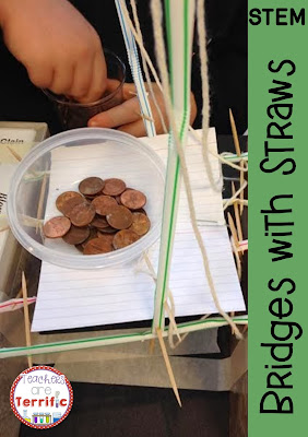 STEM Bridges with Straws