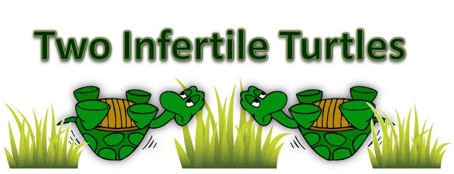 Two Infertile Turtles