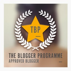 www.thebloggerprogramme.co.uk