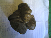 Meteor Jatuh Keatas Batu