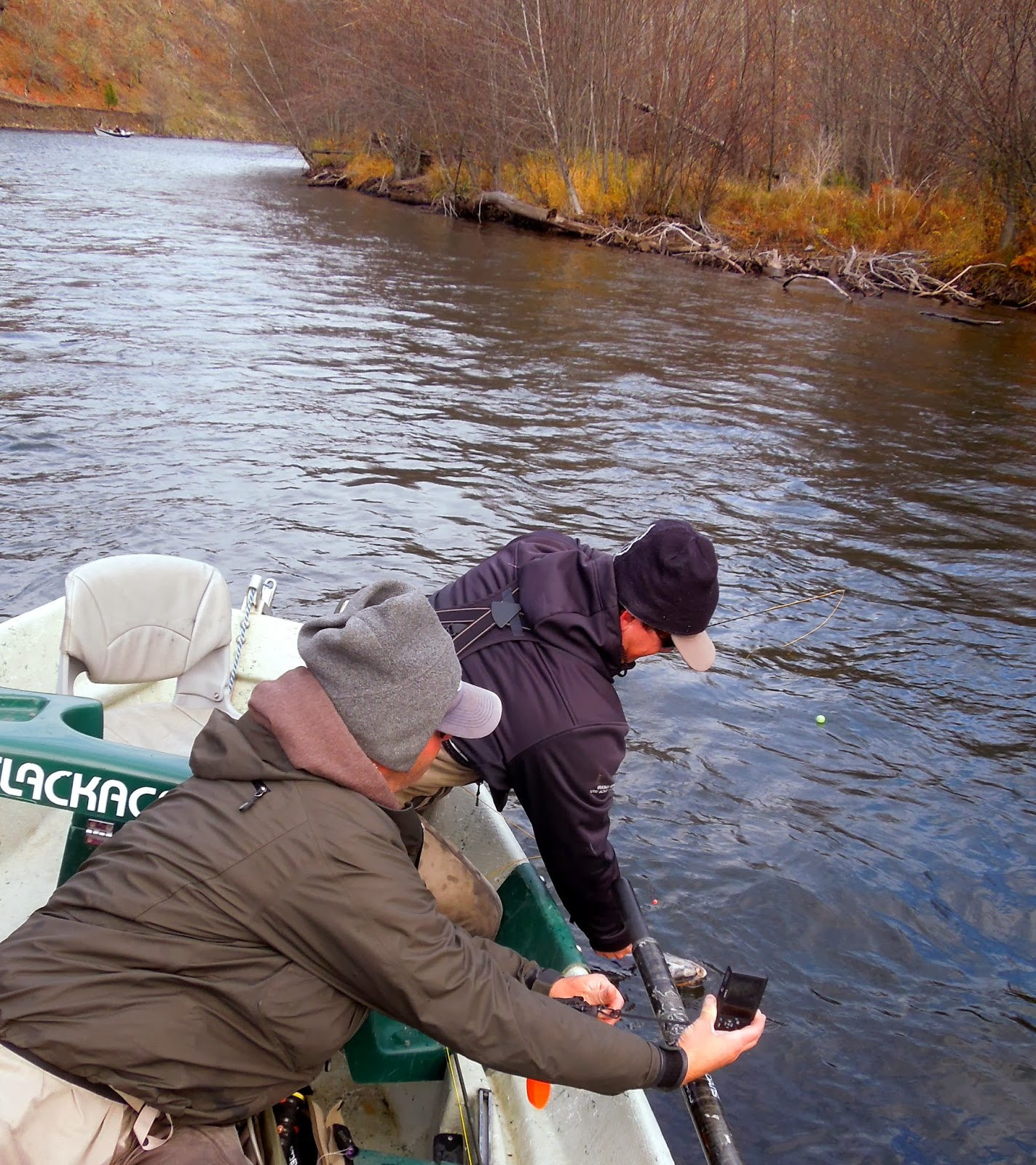 Gorge fly shop blog fly fishing chronicles dead nook rising for Rising fly fishing