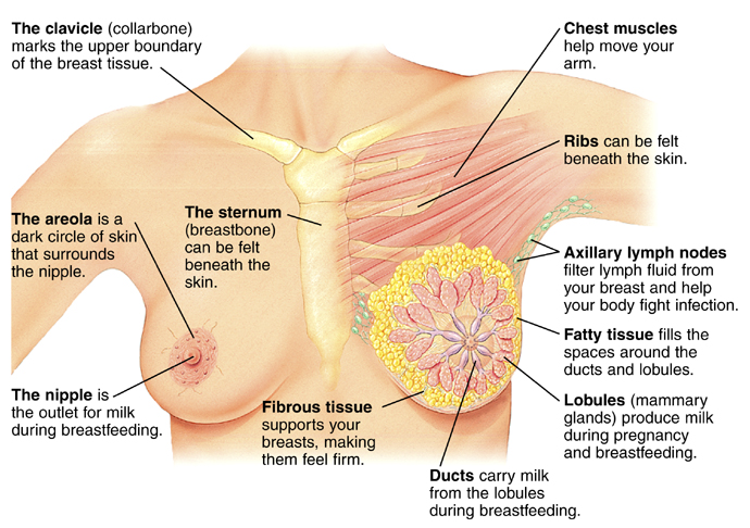 how to get rid of fluid filled cyst in breast