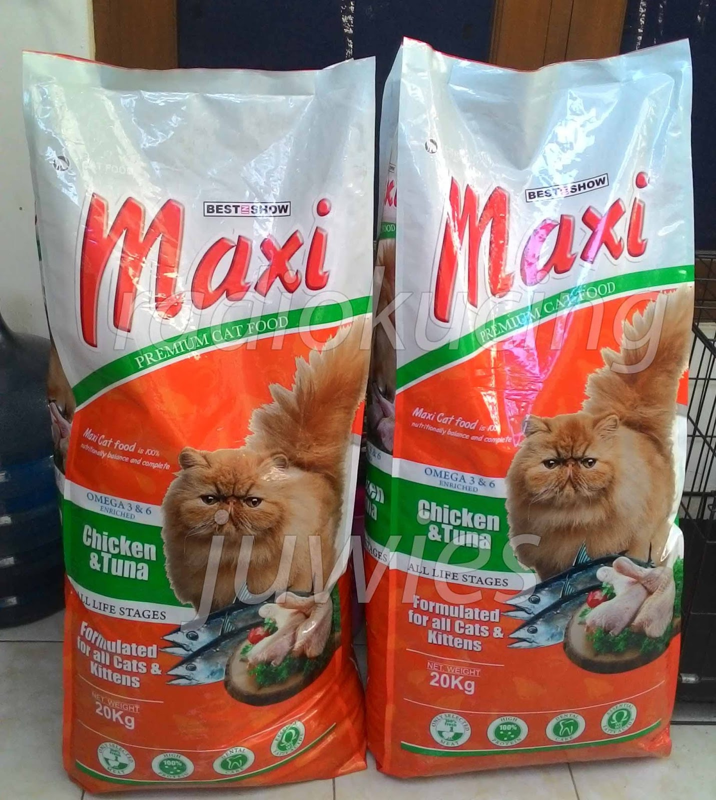 Review Makanan Kucing Maxi Premium Cat Food Radiokucing Com