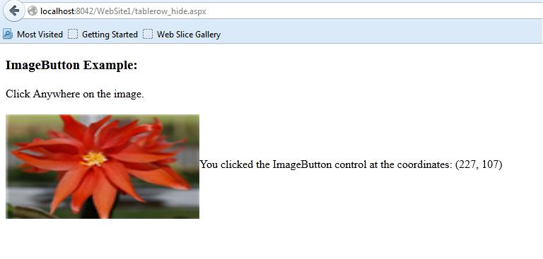 Asp.net Programming ImageButton