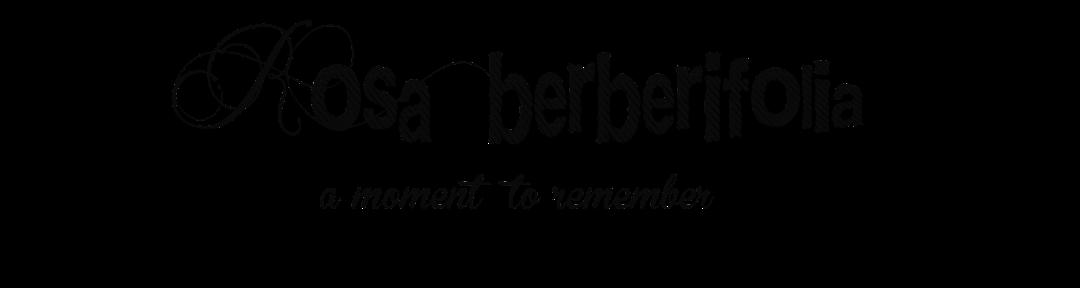 .: rosa berberifolia :.