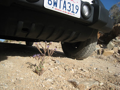 High ground clearance 4x4 Jeep