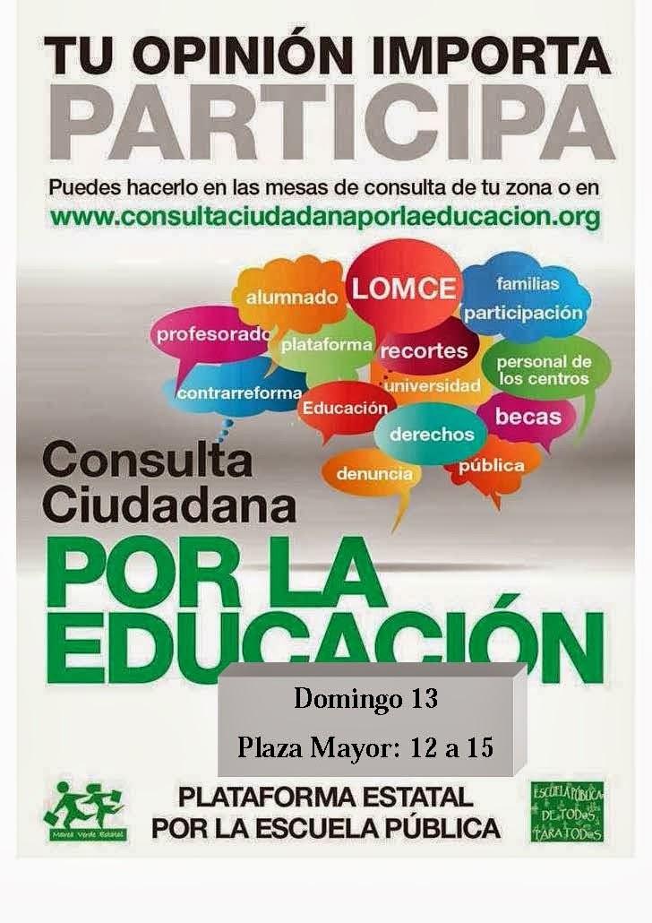 Consulta ciudadana por la Educación en Hoyo de Manzanares