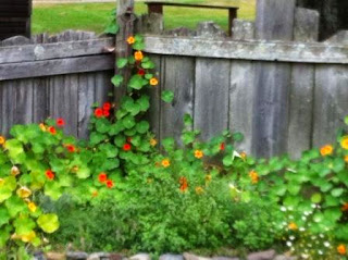 Eckley_Miners_Village_garden_Sept_2014