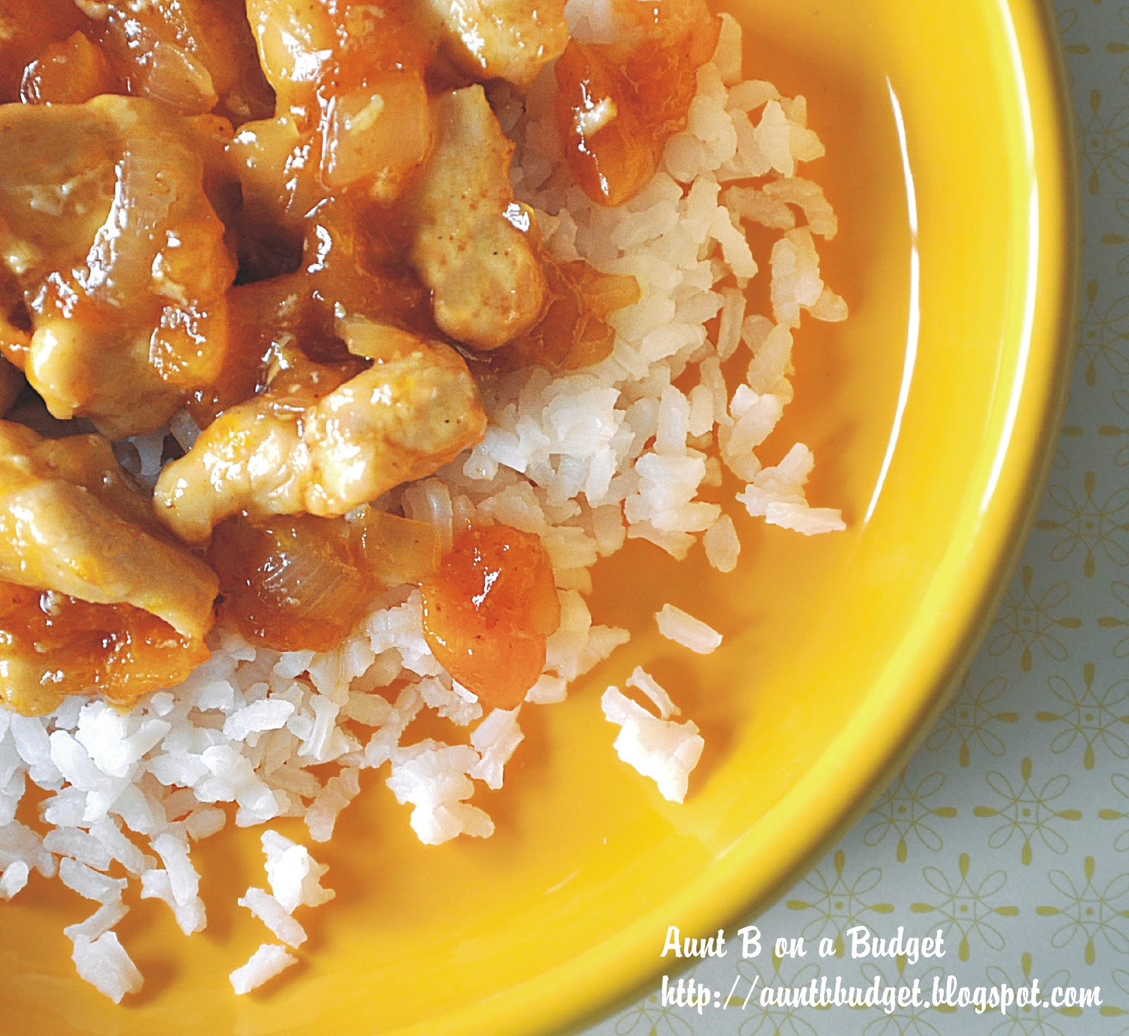 Aunt B on a Budget: Apricot Chicken