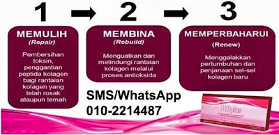 Bagaimana BB Plus Collagen bertindak