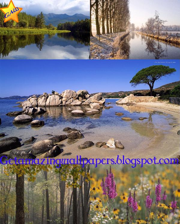 nature wallpapers hd 1080p. 2011 nature wallpaper hd 1080p
