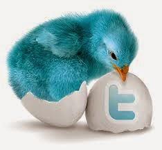 twitter followers buy