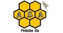 ASA - ASSOCIAÇÃO DOS APICULTORES DE PINTADAS/BA