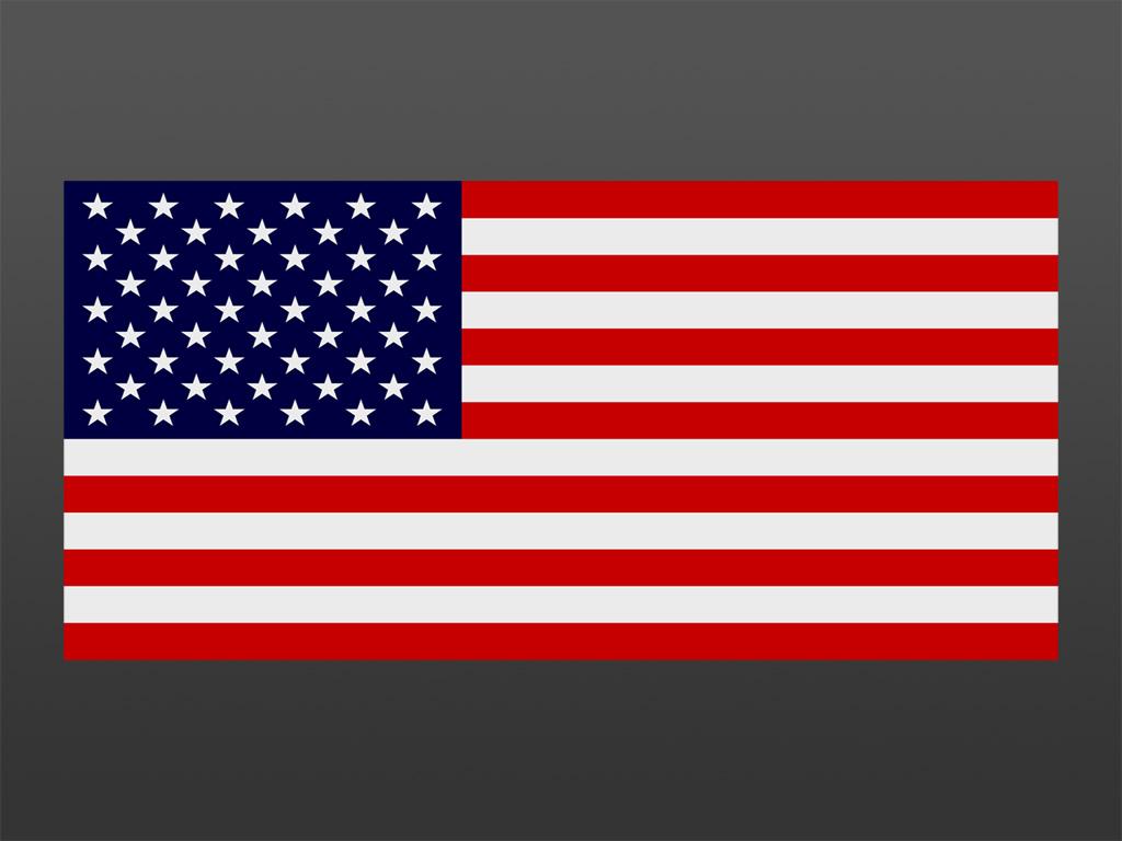 moleskinex19 the american flag On the flag is