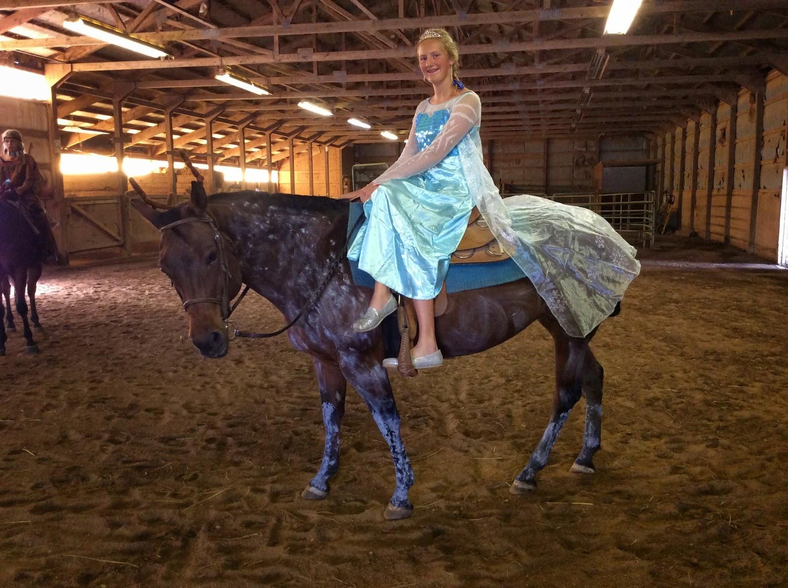On the Urban Farm: Halloween, Horsey Style!