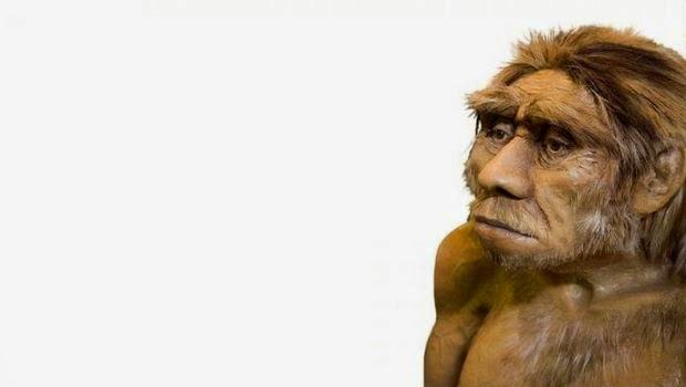 Benarkan Manusia Baru Dengan Manusia Neanderthal Pernah Hidup Bersama?