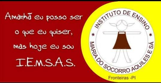 INSTITUTO DE ENSINO MARIA DO SOCORRO E SÁ