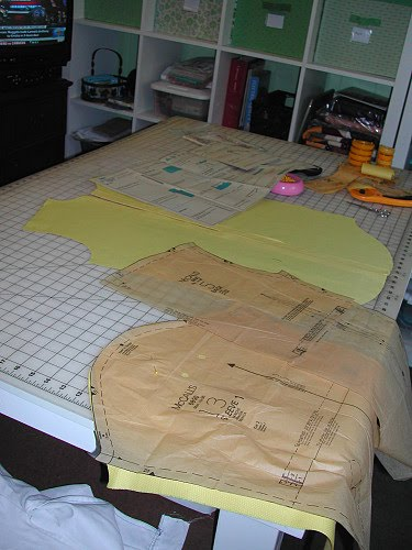 Stitches and Seams: Picking Back Up on the MPB Shirt Sew-Along
