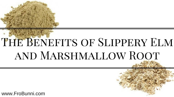 The Benefits of Slippery Elm and Marshmallow Root
