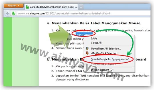 Gambar: Contoh cara pintas mencari teks menggunakan google search engine di browser internet Mozilla Firefox
