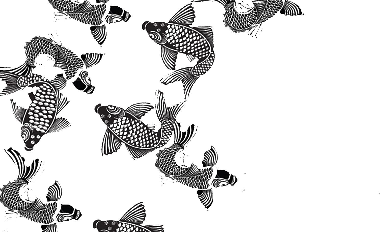 fish art pattern widescreen